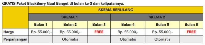 Layanan BlackBerry On Demand Gaul Indosat Skema Berulang